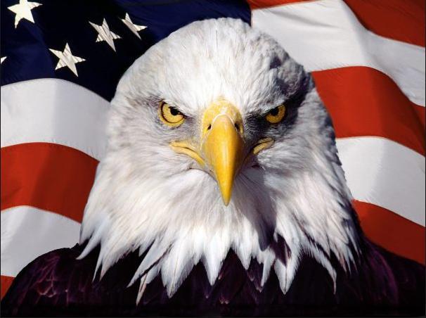 american-liberty